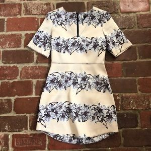 NWOT TopShop Dress